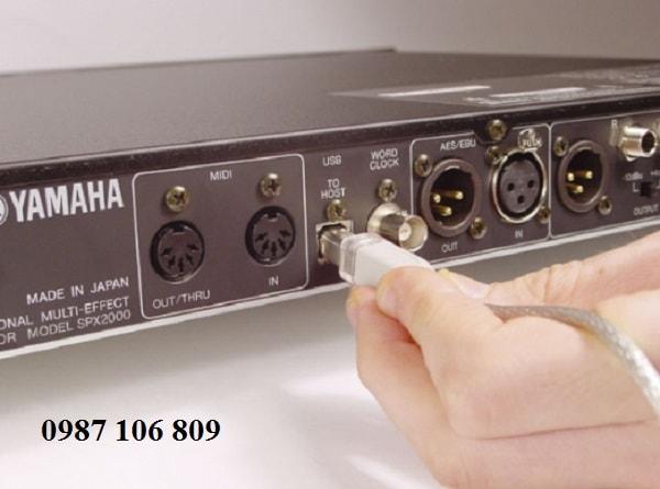 HÌnh ảnh thực tế Vang số Yamaha DSP 99